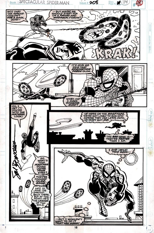 Spectacular Spider-Man #208 p18 (SPIDER-MAN & THE SHROUD BATTLING!) 1993
